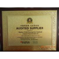 Master Well Enterprise Limited Certifications