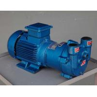 Quality 2BV series Water Ring Vacuum Pump for sale