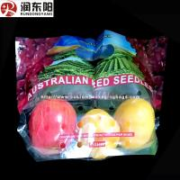 Quality Stand Up Fruit Packaging Bags PE Laminated Punch Zipper Lock Moisture Proof for sale