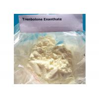 China High Purity Tren Bodybuilding Supplement , Trenbolone Enanthate Powder on sale