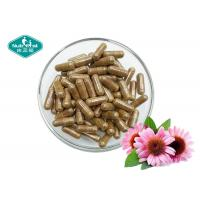 Quality Echinacea Purpurea 400mg Capsules Helps Fight Colds & Upper Respiratory Tract Infections for sale