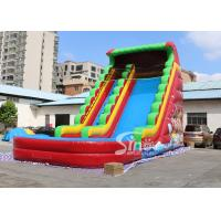 China 8 meters high custom design inflatable pirate water slide with digital printing from China factory on sale