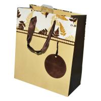 Quality shopping paper bag for sale