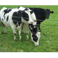 Quality Flexible Woven Hinge Joint Field Wire Fence For Grassland / Pastures for sale