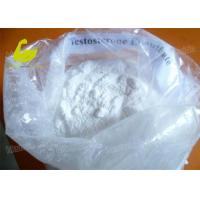 Buy Testosterone Enanthate supplier White Crystalline Muscle Building Steroid at wholesale prices