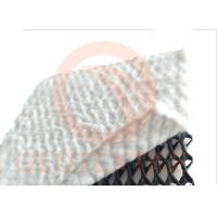 Quality High Permeability Geocomposite Drainage Net For Underground Drainage 2 - 4m Width for sale