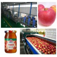 China Small Capacity Apple Juice Processing Plant SS304 Material Beverage Processing Line on sale