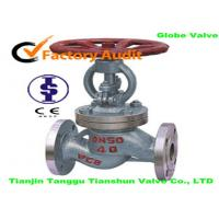 Quality WCB Globe Corrosion Resistant Valves For Liquid Gas , DN50 / PN40 for sale