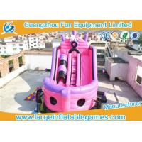China Large Pink Inflatable Pirate Ship Bouncer Slide , Outdoor Inflatable Slide For Sport Games on sale
