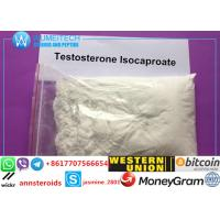 Testosterone Enanthate Steroid Testosterone Isocaproate Muscle Growth Anabolic Steroid Powder
