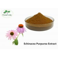 Quality Echinacea Extract Powder 2% Cichoric Acid for sale