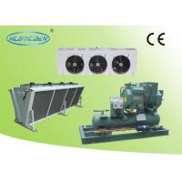 Quality Cold room storage room air cooled Bitzer condensing unit with air cooler for sale