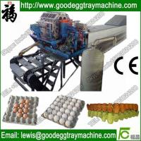 Quality Pulp molding machine for sale