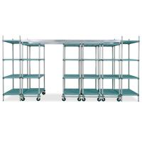Quality 4 Adjustable Hygiene Polymer Overhead Head Track Shelving Unit For Pharmaceutical for sale