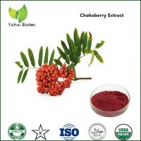 Quality HIgh quality natural anthocyanin of chokeberry extract for sale