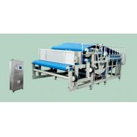 Quality DY Type Belt Press Squeeze Extractor Fruit Juice Extractor Machine 8TPH SUS304 for sale