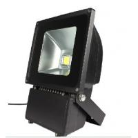 Quality Lower Power FL2240 AC220V/40W Led Landscape Lighting Fixtures with 5mm Tempered Glass for sale