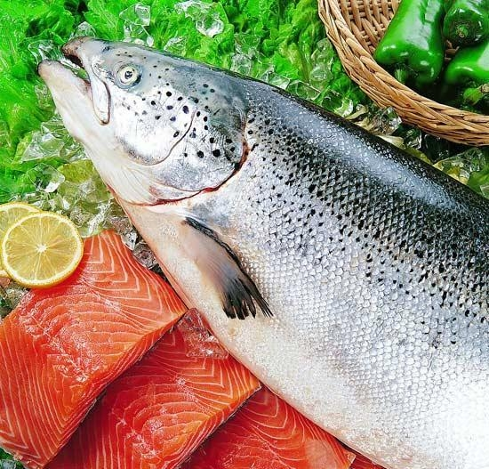 Buy FISH PRODUCTS Salmon at wholesale prices