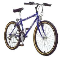 Best Mountain bicycle wholesale