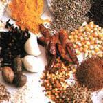 Best Spices wholesale