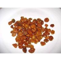 Best Dried Golden Berries Aguaymanto Physalis Peruviana wholesale