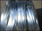 Quality Electro Galvanized iron wire for sale