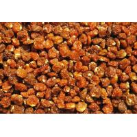 Best Dried Organic Incan Golden Berries (Physalis Peruviana) wholesale