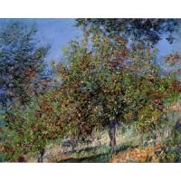 Quality Impressionist(3830) Apple_Trees_on_the_Chantemesle_Hill for sale