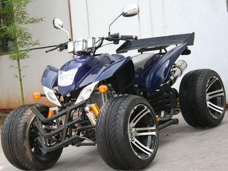 quad atv raptor images. Black Bedroom Furniture Sets. Home Design Ideas
