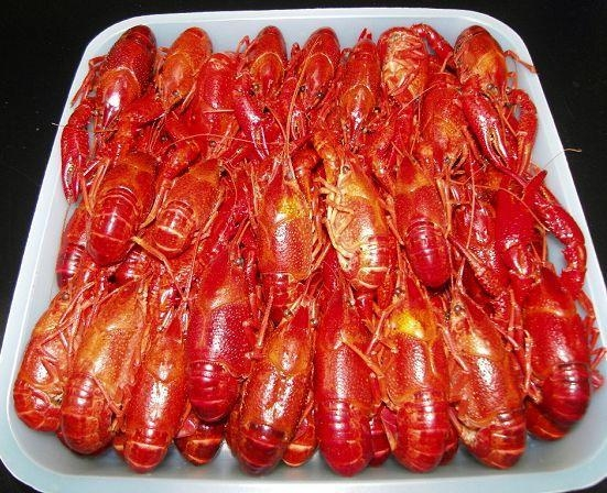 Buy LOBSTER SERIES Block Frozen Whole Cooked Crywfish Unseasoned at wholesale prices