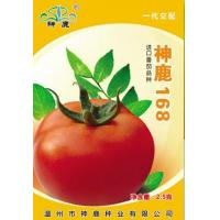 Quality Holy Deer168- Tomato Seed for sale