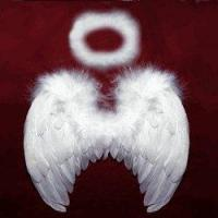 Best Babies Infants White Angel Wings + Halo W0020+HL wholesale