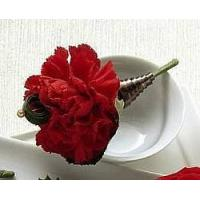 Quality View our full inventory The FTD Red Carnation Boutonniere for sale