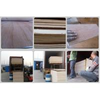 Packing Plywood with Good Price and Quality