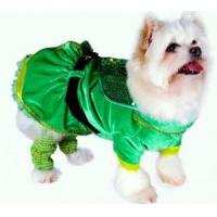 Best Costumes Little Leprechaun Pet Girl Dog Costume wholesale