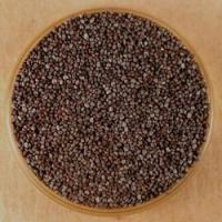 Best Spices A - Z Poppy Seeds, Black wholesale