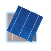 Best Poly Crystalline Silicon Solar PV Cells wholesale