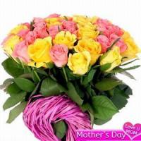 Quality Pink and Yellow Roses NO.31 for sale