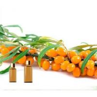 Best Essential Oils Seabuckthorn Oil wholesale