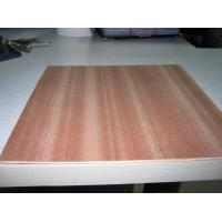 Colored Sapele Fancy Plywood