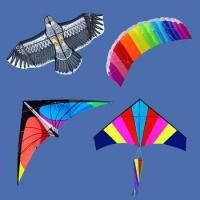 Quality outdoor toy different types of kites for sale