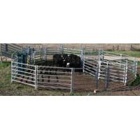 Quality heavy duty hot dipped galvanized cattle yard panel/livestock fence/cattle fence/cattle panel for sale