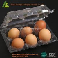 China Biodegradable Plastic Egg Tray on sale