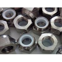Titanium Hex Nylon Nut