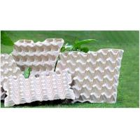 China BIODEGRADABLE PULP EGG TRAYS on sale