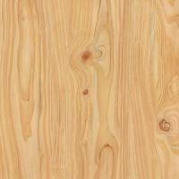 Quality Wood Pattern Prepainted Steel Sheet for Furniture for sale