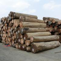 Quality Manufacturers Direct Sales Wholesale Timber Oil Content High Durable Authentic Teak Wood Logs for sale