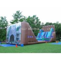 China IS-118 large Dry Gulch Zipline--mobile inflatable zip line on sale