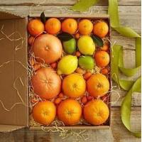 Quality Simply Fresh Winter Citrus NO.2 shenzhen gift hamper delivery for sale