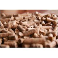 Feed Binders  - Global Market Outlook (2016-2022)